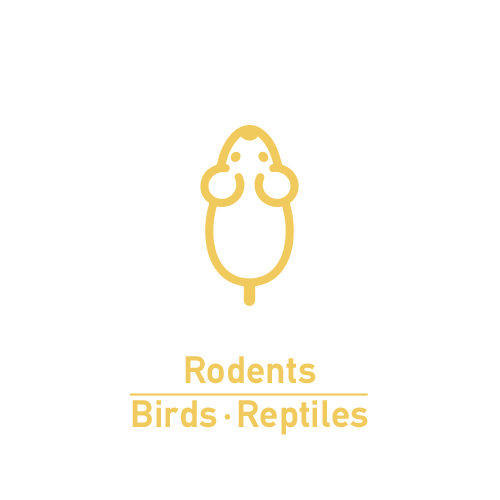 Birds-Rodents-Reptiles